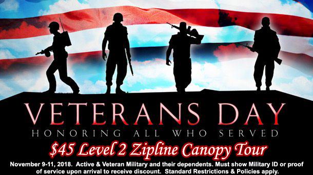2018 Veterans Day $45 Level 2